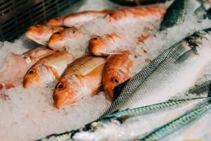 branding-chandos-deli-fish-counter