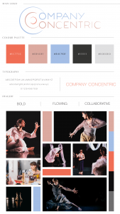 Company Concentric Photography Brand Identity Guidlines